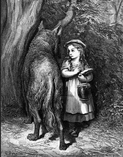 chaperon rouge, loup, Mish Defoneca, Survivre avec les loups, Véra belmont, Lionel Duroy, éditions Fixot